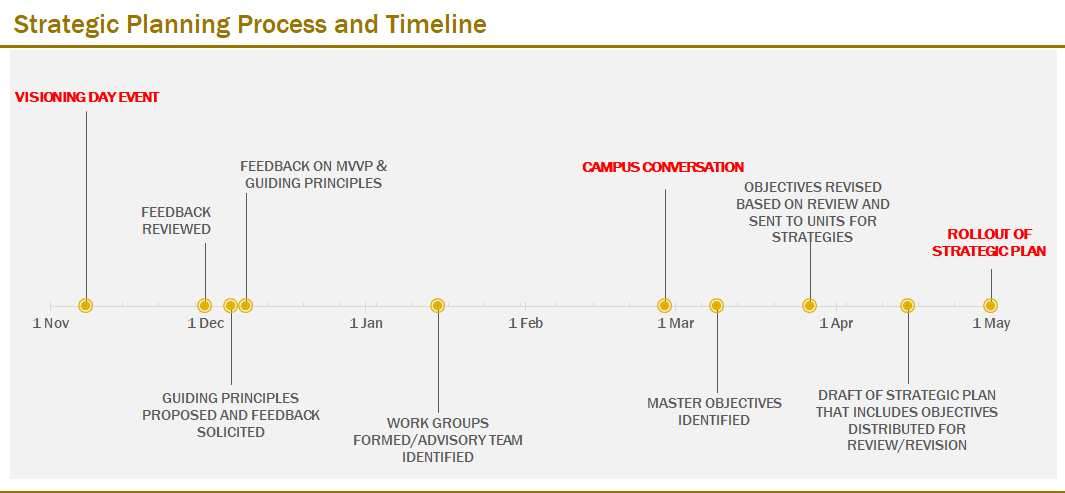 Strategic Planning Process and Timeline